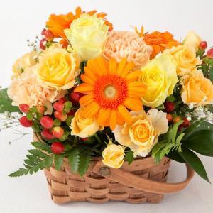 お祝い用アレンジメント(オレンジ系)。送料・手数料無料。メッセージカード付。|hana-sandlot