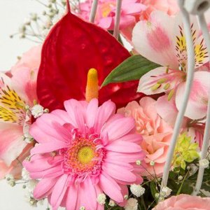 お祝い用アレンジメント(かご・ピンク系)。送料・手数料無料。メッセージカード付。|hana-sandlot