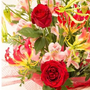 お祝い用アレンジメント(赤バラ)。送料・手数料無料。メッセージカード付。|hana-sandlot