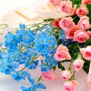 お祝い用花束(スプレーバラ・プラチナブルー)。送料・手数料無料。メッセージカード付。 hana-sandlot
