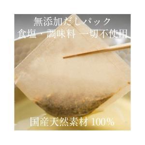 鰹本枯節だしパック 2人用 10g×10包入   国産 無添加 調味料 食塩不使用|hanabishi-syoten|02
