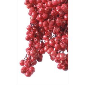 大特価 即日 プリザーブド 大地農園 ペッパーベリー プリザーブド 55g レッド 03380-300 プリザーブド実もの ペッパーベリー