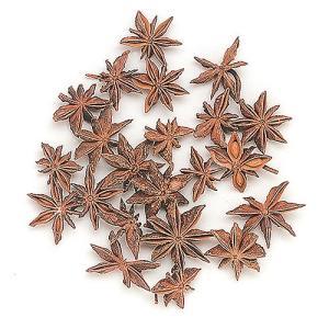 即日 ドライ 東北花材 スターアニス ナチュラル 約50g 63093 ドライ実物&フルーツ フルーツ、香りのアイテム