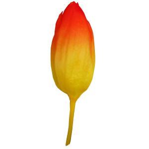 プリザーブド 南原農園 チューリップM 7輪 オレンジグラデーション 01  さ行 その他プリザーブドフラワー花材|hanadonya