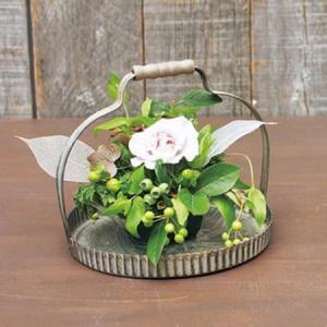 SPICE ラギッド ハンドルラウンド L BAGF2063 01  3個 花器 花瓶 ブリキ アイアン アルミ花器|hanadonya