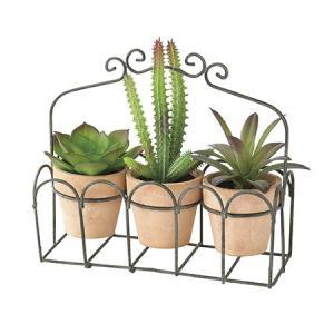 造花 SPICE DECOR IMITATION CACTUS 3PセットBR TADY4039BR 01  3個 造花葉物、フェイクグリーン 多肉植物|hanadonya