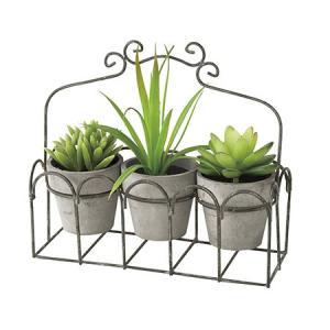 造花 SPICE DECOR IMITATION CACTUS 3PセットGY TADY4039GY 01  3個 造花葉物、フェイクグリーン 多肉植物|hanadonya