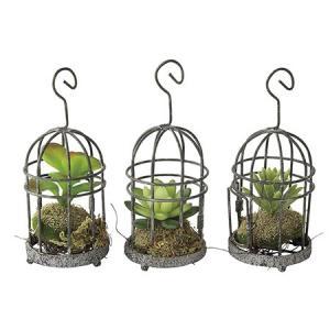造花 SPICE DECOR IMITATION MINI CACTUS CAGE アソート TADY4058 01  6個 造花葉物、フェイクグリーン 多肉植物|hanadonya