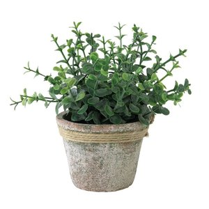 人工観葉植物 SPICE フェイクグリーンポット オレガノ TADY6010 6個 人工観葉植物「か行」 カジュアルポット|hanadonya