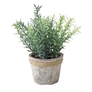 人工観葉植物 SPICE フェイクグリーンポット ローズマリー TADY6020 6個 人工観葉植物「か行」 カジュアルポット|hanadonya