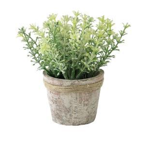 人工観葉植物 SPICE フェイクグリーンポット ハーブセロリ TADY6030 6個 人工観葉植物「か行」 カジュアルポット|hanadonya