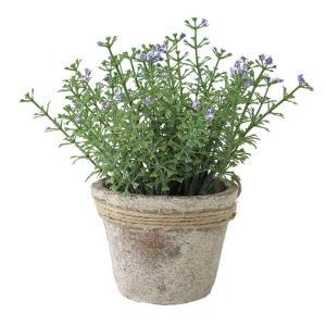 人工観葉植物 SPICE フェイクグリーンポット ワイルドフラワー ブルー TADY6040 6個 人工観葉植物「か行」 カジュアルポット|hanadonya