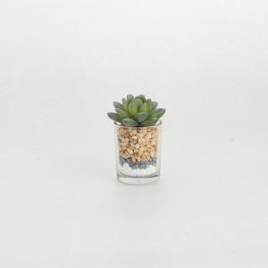 人工観葉植物 SPICE フェイクグリーン ミニガラスポット A TADY7160A 4個 人工観葉植物「か行」 カジュアルポット|hanadonya