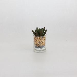 人工観葉植物 SPICE フェイクグリーン ミニガラスポット B TADY7160B 4個 人工観葉植物「か行」 カジュアルポット|hanadonya