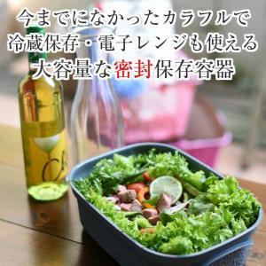 【あすつく対応】パイナポットセット パイナポット インナーカップ インナートレー 3点セット 6色展開 | ハワイアン雑貨 キッチン雑貨 保存容器 おすすめ おし|hanahawaii