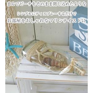 【あすつく対応】 ウィスキーシェルボトル H22cm | ハワイアン雑貨 砂浜 ハワイ 瓶 ビン 貝殻 インテリア シェル 小物 インテリア雑貨 ディスプレー マリンテ|hanahawaii