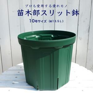 花ひろばスリット鉢(10号)