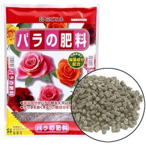 薔薇(バラ)肥料の定番!バラを丈夫に育て、花を美しく咲かせる専用肥料です。 海藻成分がバラの根を丈夫...
