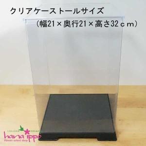 【クリアケース】トールサイズ|hanaippo