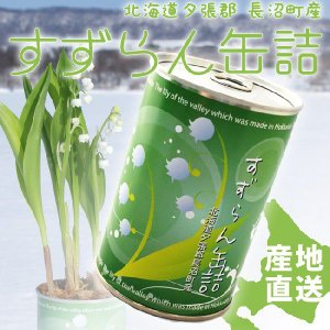 「幸せが訪れる北海道からの贈り物」 品名:すずらん缶詰 1缶 鈴の形をした小さい可愛らしいすずらんを...