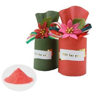 クリスマス プチギフト「ポインセチアバス 入浴剤 1個」雑貨 個包装 大量 業務用 HFP1187 hanakobo-wedding