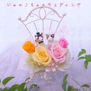 猫ちゃんウェディング 結婚祝い ギフトセット プリザーブドフラワー クリアケース入り ブライダルねこ にゃんこ ブライダルギフト ジューンブライド|hanaland87