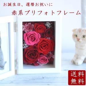 赤バラプリフォトフレーム プリザーブドフラワー 写真立て 誕生日 還暦 母の日 古希 喜寿 結婚祝い 両親贈呈 赤系 ギフト ガラスケース 額 壁掛け|hanaland87