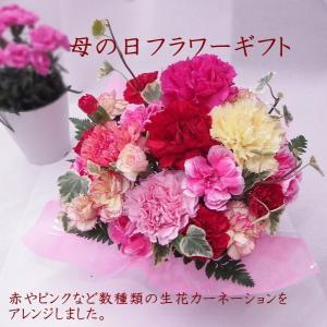 母の日 プレゼント 花 アレンジメント カーネーション 赤 ピンク オレンジ パステルカラー 花ギフト 送料無料 クール便|hanaland87