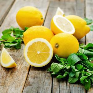 マイヤーレモン 果実 苗木 4.5号 直径13.5cm ポット ベランダでも果樹園 柑橘系 常緑高木 観葉植物 hanamankai