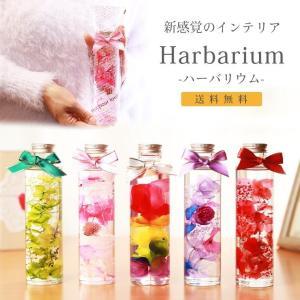 母の日の贈り物 プリザーブドフラワーを使用したハーバリウム ...