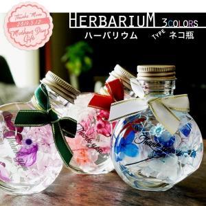 今注目されている新感覚フラワーインテリアでお母さんに癒しをプレゼント  ■商品の種類:ハーバリウム ...