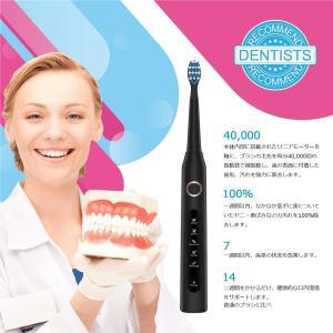 電動歯ブラシ 歯ブラシ ハブラシ Fairywill 音波歯ブラシ 充電式 ブラック ソニック IPX7防水 4時間がかかって30日に使用 hanamaru-ya