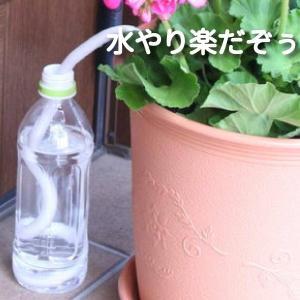 水やり楽だぞぅ 4本入り 送料別 <自動給水>自動潅水・給水