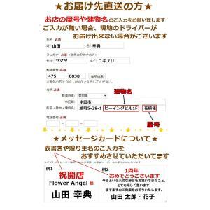 ミニオン ぬいぐるみ バルーン 電報 誕生日 発表会 記念日 プレゼント 造花 ギフト|hanamoyou2|19