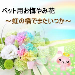 ■商品形態:生花アレンジメント ■使用花材:メイン:レインボーカーネーション、カーネーション、トルコ...