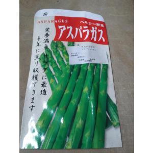 野菜苗 アスパラガス 健康野菜