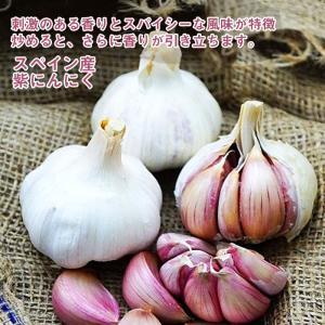 種ニンニク 紫にんにく 2球 スペイン産|hananoyamato-online