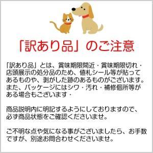 訳あり 【訳あり アウトレット】ペット食器のやわらかカバー S (食器用) 【在庫処分】|hanasakajijii|02