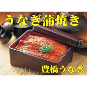 母の日 ランキング ギフト 鰻 人気:うなぎ蒲焼き 1尾 ギフトセット【たれ付】