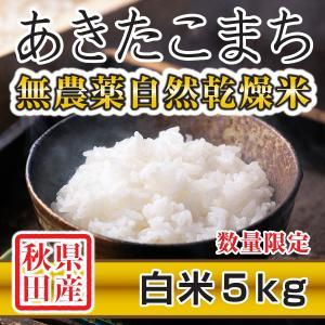 【新米予約】 白米 令和3年産新米 秋田県産 あきたこまち 無農薬自然乾燥米 5kg 農家直送|hanatsukafarm