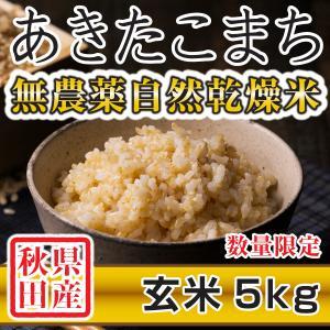 【新米予約】 玄米 令和3年産新米 秋田県産 あきたこまち 無農薬自然乾燥米 5kg 農家直送|hanatsukafarm