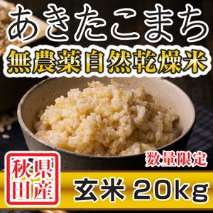 【新米予約】 玄米 令和3年産新米 秋田県産 あきたこまち 無農薬自然乾燥米 20kg 農家直送|hanatsukafarm