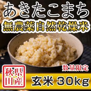 【新米予約】 玄米 令和3年産新米 秋田県産 あきたこまち 無農薬自然乾燥米 30kg 農家直送|hanatsukafarm
