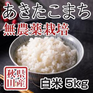 【新米予約】 白米 令和3年産新米 秋田県産 あきたこまち 無農薬栽培米 5kg 農家直送|hanatsukafarm