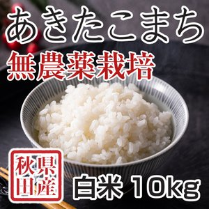 【新米予約】 白米 令和3年産新米 秋田県産 あきたこまち 無農薬栽培米 10kg 農家直送|hanatsukafarm
