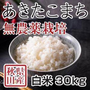白米 令和3年産新米 秋田県産あきたこまち 無農薬栽培米 30kg 農家直送|hanatsukafarm