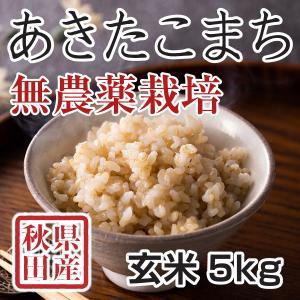 【新米予約】 玄米 令和3年産新米 秋田県産 あきたこまち 無農薬栽培米 5kg 農家直送|hanatsukafarm