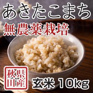 【新米予約】 玄米 令和3年産新米 秋田県産 あきたこまち 無農薬栽培米 10kg 農家直送|hanatsukafarm
