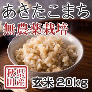 玄米 令和3年産新米 秋田県産あきたこまち 無農薬栽培米 20kg 農家直送|hanatsukafarm