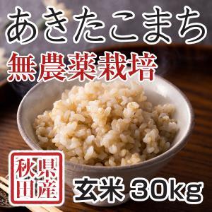 玄米 令和3年産新米 秋田県産あきたこまち 無農薬栽培米 30kg 農家直送|hanatsukafarm
